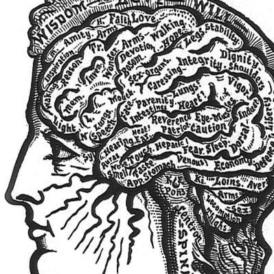 The olden days of brain studies.