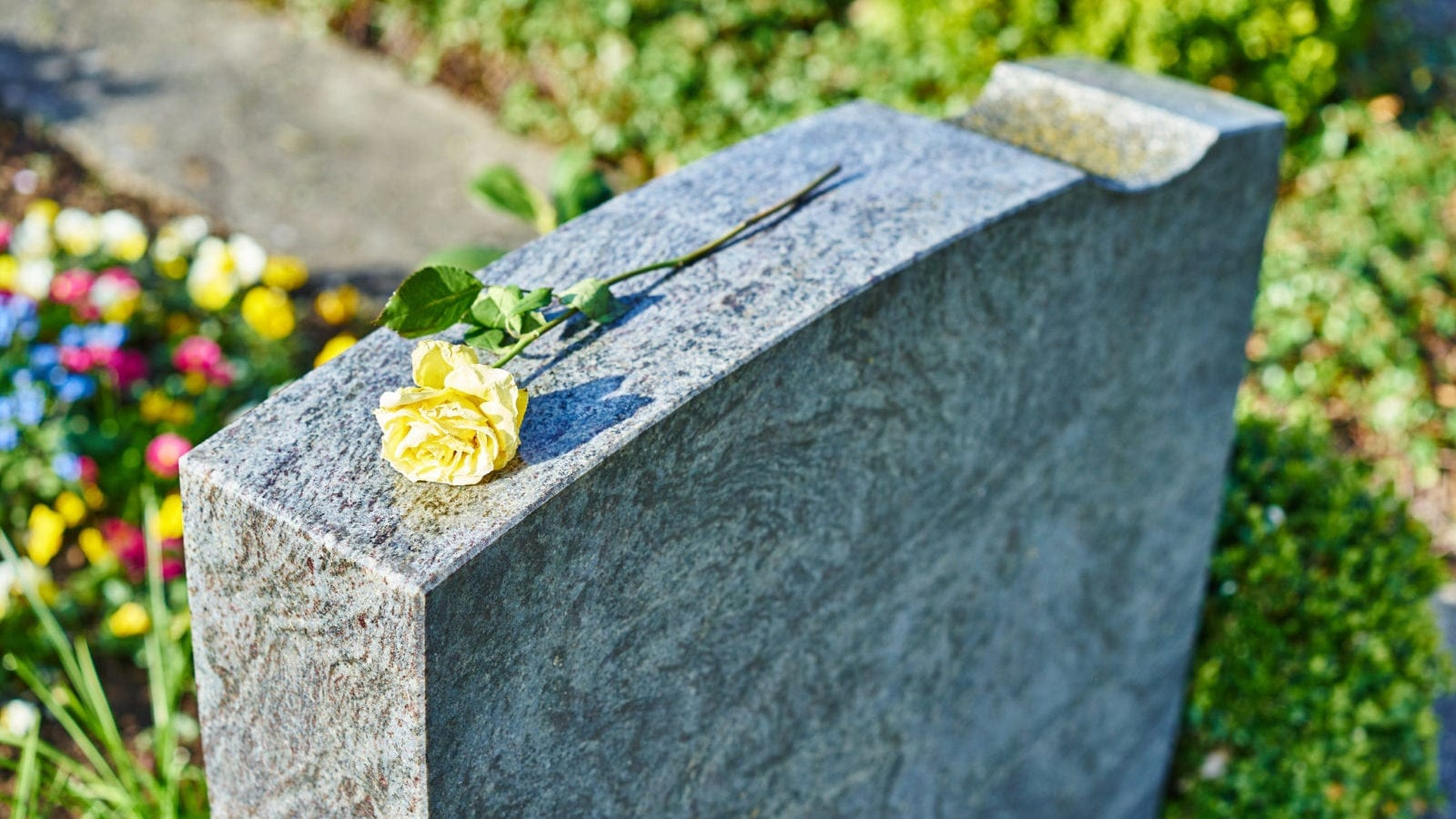 Yellow Rose Laying On A Gravestone Stock Photo